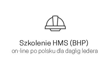 Szkolenie HMS (BHP) on-line po polsku dla daglig ledera